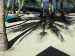 Palmenschatten auf Westsamoa
