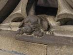 Straßburger Münster, der Hund des Steinmetzes der Kanzel