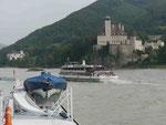 Schloss an der Donau, Österreich