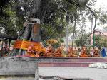 Meditierende Mönche am  Mahabodhi Tempel von Bodhgaya, Indien