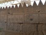 Reliefs in Persepolis, I. R. Iran