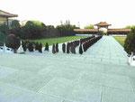 Ein Frauenseminar unterwegs zum Hauptschrein, Fo Guang Shan Kloster