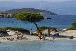 Strand auf Chalkidike
