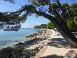 Am Strand von Brela, Markarska Riviera, Kroatien