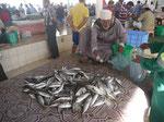 Fischhändler auf dem Fischmarkt von Muscat, Oman