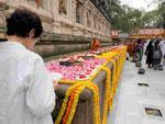 Blumenspenden am  Mahabodhi Tempel von Bodhgaya, Indien
