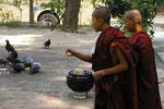 Die Reste für dieTauben! Essensspenden im Mönchskloster, Myanmar (Burma)