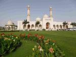 Sultan Kaboos Moschee, Salalah, Sultanat Oman