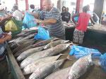 Fischverkäufer in Victoria, Seychellen