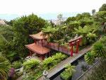 Tropischer botanischer Garten in Monte, Funchal, Madeira