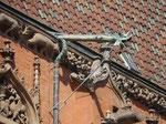 Wasserspeier am Wawel, Krakau, Polen