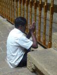Betender am Zahntempel in Kandy, Sri Lanka