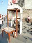 Taubenfutterverkäufer an der Neuen Moschee, Istanbul, Türkei