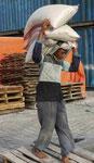 Arbeiter im alten Hafen von Jakarta