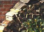 Anmachholzstapel