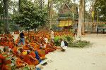 Mönche im Gebiet von Angkor Wat, Siem Reap, Kambodscha