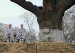 Zwei meditierende Mönche in Sarnath, Indien
