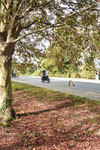 Auf Zweirädern unterwegs