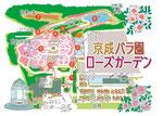 京成バラ園ローズガーデン