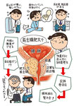 前立腺肥大 前立腺がん 尿路感染症