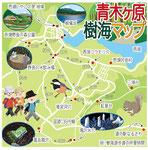 青木ヶ原樹海マップ