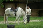 Pause für Pferd und Mensch