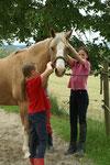 Verzieren der Pferde zum Abschluss