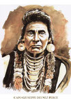 Capo Giuseppe dei Nez Perce.