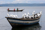Lake Victoria, Tansania