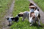 Nelly, Eyla, Benny & Aaron