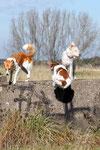 Ich kommeeeee! (Baila, Kabou & Jette)