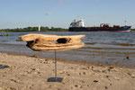 Baumseelenschiff