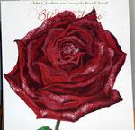 "Bild ""Rose"" Details, 250 x 100 cm / Acryl"