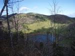 天望山からの東雲湖(ナキウサギがいるという)