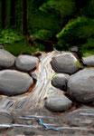 透き通る小さな渓流には、小さな龍がいて欲しい。