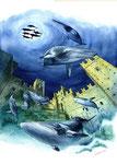 il golfo delle balene