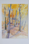 Lichter Buchenwald     Bildgrösse    83  x 61  cm