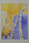 Birken im Herbst   Bildgrösse    83  x 61  cm