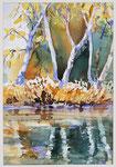 Spiegelung     Bildgrösse    55  x 45  cm