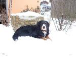 Schnee liebt sie. Hier mit 1,5 Jahren