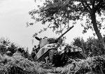 Sherman mit Culin Hege-Cutter beim Durchbruch einer Hecke