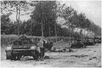 Nach dem Ende der Kämpfe in Villers-Bocage: Zerstörte Lloyd Universal Carrier bei Höhe 213