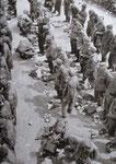 Soldaten des SS-Pz.Gren.Regt. 38 nach ihrer Gefangennahme am 7. oder 8. Juli