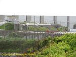 Die auf dem Gelände des Arsenal liegenden Kasematten sowie der Leitstand der M.K.B. Bastion II Arsenal