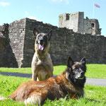 Burg in England Sommer 2012