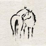 Meine Pferde 5