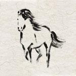 Meine Pferde 3