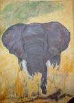 Elefant Savuti, Acryl, 80x110cm, gerahmt, 1200,00 Euro
