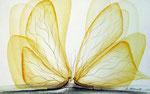 2 Schmetterlinge, Aquarell 1980, 26x16cm, 560,00 Euro