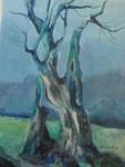 Ölbaum, Acryl, 40x58cm, 740,00 Euro